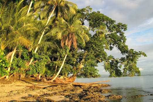 Ahe Island (Harlem Islands) - Cenderawasih Bay - West-Papua - Indonesia 2011