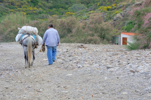 Impression from Kyparissi beach - Ikaria Island - Greece - May 2012
