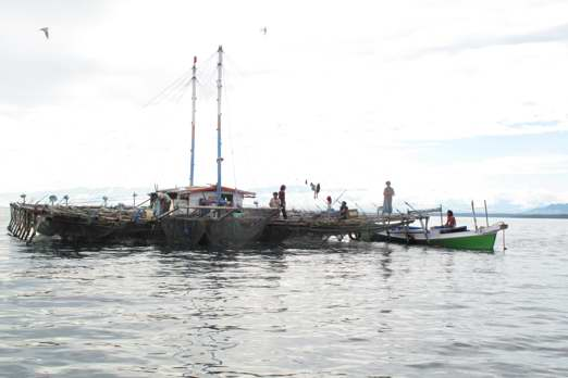 Bagan (floating fishing platform) - Cenderawasih Bay - West-Papua - Indonesia 2011