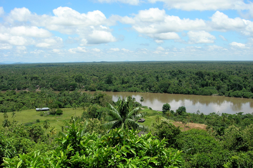 Korewori river - view from the Karawari Lodge - East Sepik Province - PNG 2007