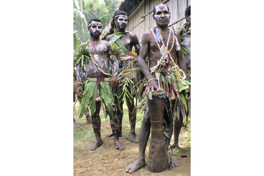 Group of natives with ceremonial make-up - Yimas area - East Sepik Province - PNG 2007