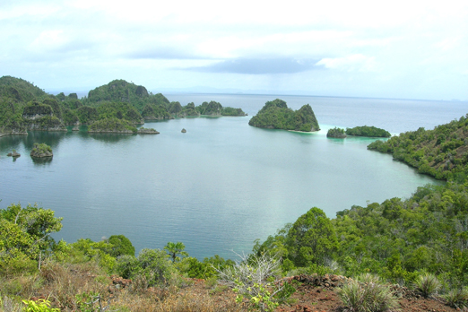 Lagoon on North Fam Island - Raja Ampat Archipelago - West Papua - Indonesia 2007