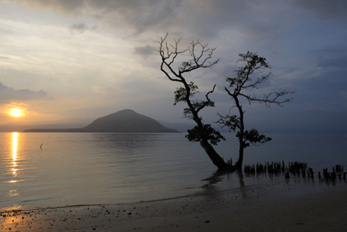 Sunrise near Alor Divers Eco Resort - Pantar - Alor-Archipelago - Indonesia 2010