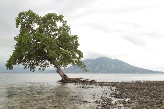Scenery View - Pantar - Alor-Archipelago - Indonesia 2010