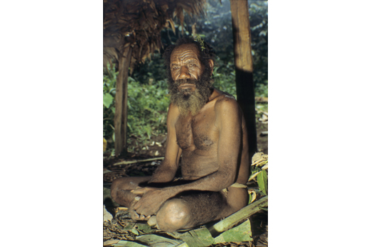 Spirit man - native of the Huli tribe - Southern Highlands Province - PNG 2006