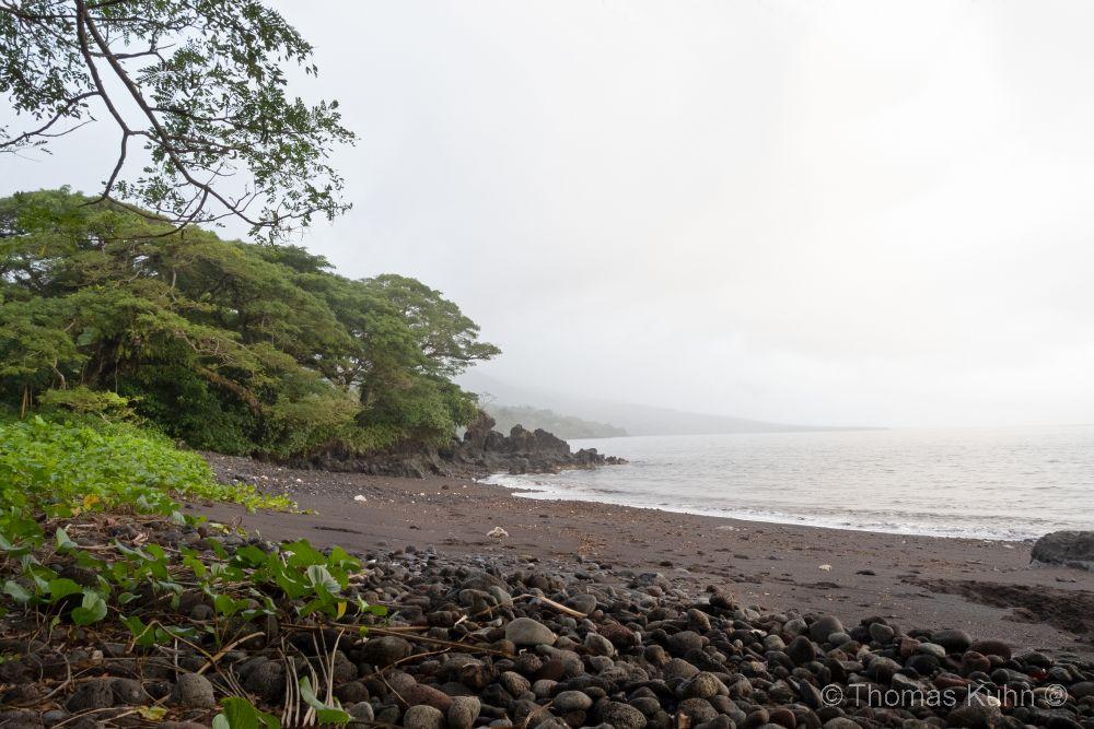 Niue_2019_2_3_DSCN0982