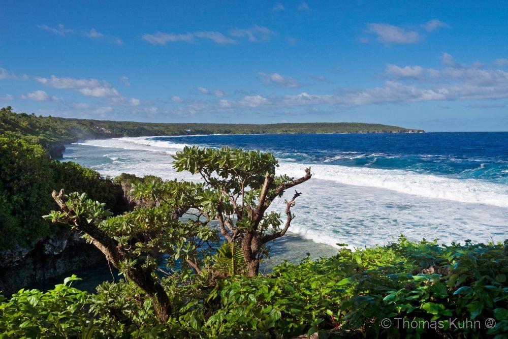 Niue_2019_DSCN0756