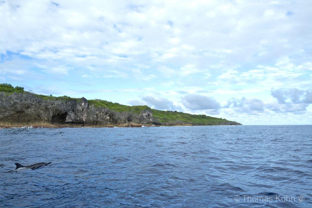 Niue_2019_DSCN0799