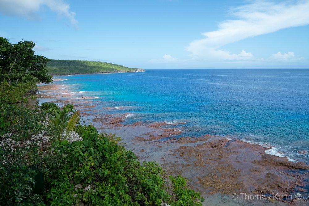Niue_2019_DSCN0950