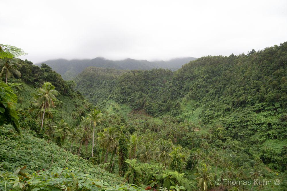 Niue_2019_DSCN1099