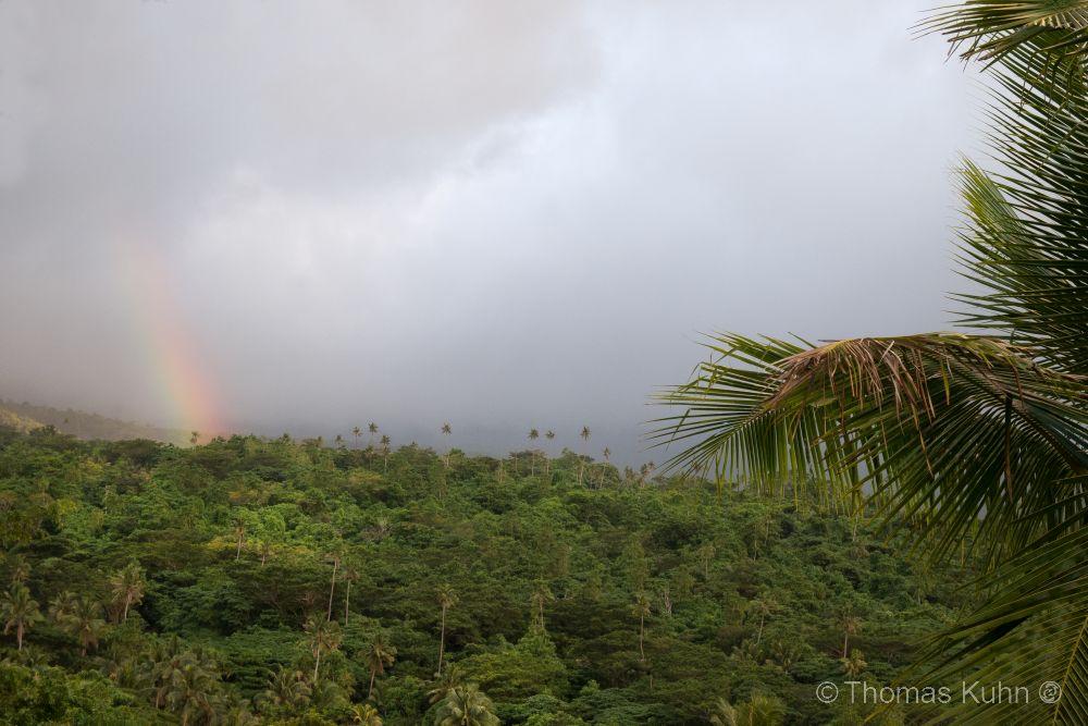 Niue_2019_DSCN1190