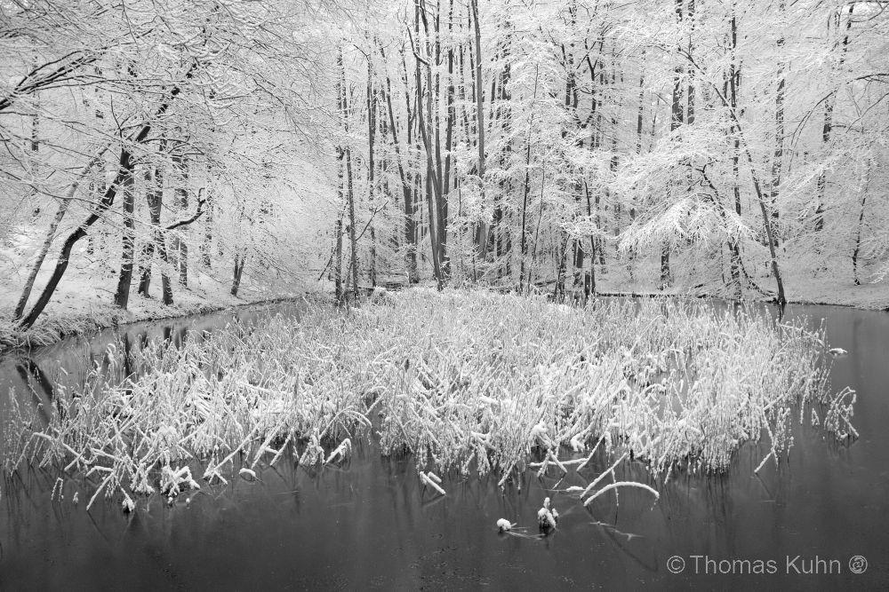 LandscapeFischerhütte_04_02_2018_sw_TOMDSCN9308