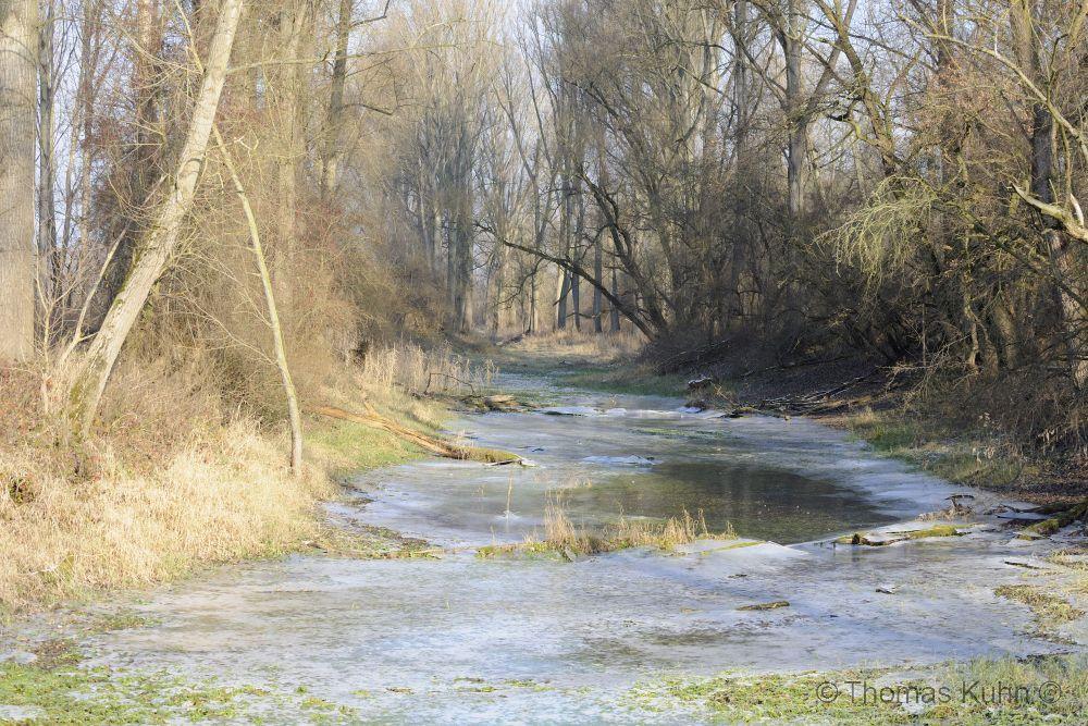 LandscapeHammer_Aue_Seitenarm_TOM1742