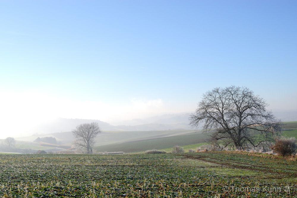 LandscapeHundertmorgen_03_12_2016_TOMDSCN6065