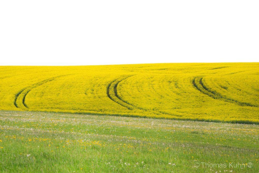 LandscapeRehbach_DSCN1531