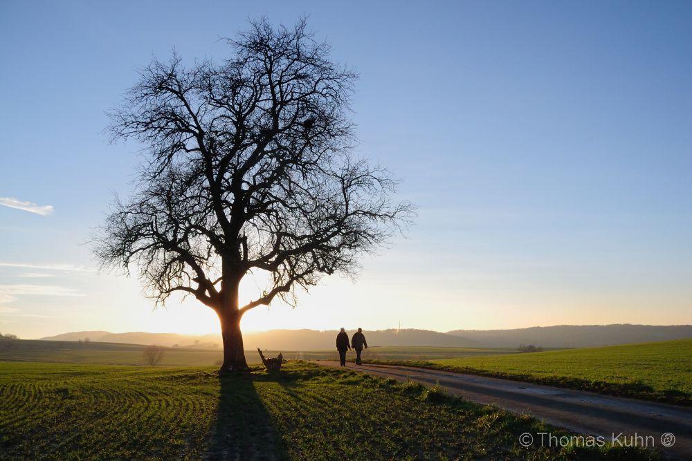 LandscapeRohrbach_12_01_2014_TOMDSCN7957