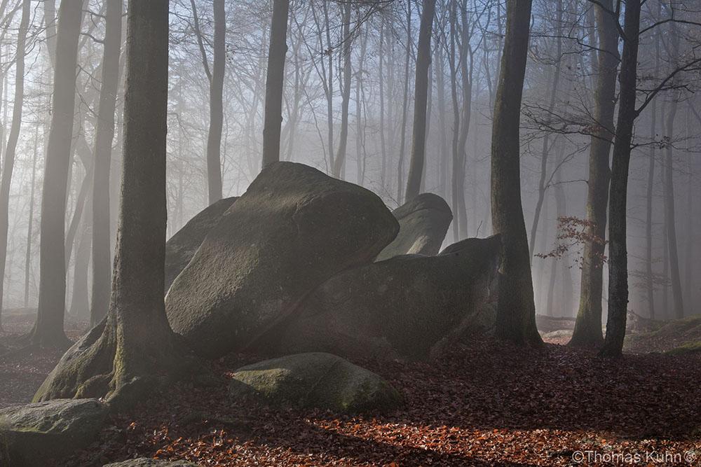 Felsenmeer_skal_TOM6537
